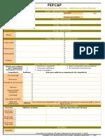 PEP.C&P_Planejamento de Carreira & Vida Pessoal_rev1