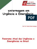 1 Aula - 04-08-14 Urgencia e Emergencia