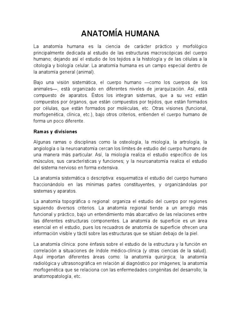 Famoso Cuál Es La Anatomía Sistémica Bandera - Anatomía de Las ...