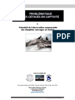 Hammamet & La Goulette Dolphinariums - C Yzoard 2009