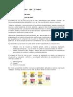 TrabajoFinal_FaseV Gestion Ambiental