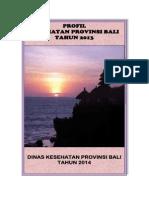 Profil Kesehatan Provinsi Bali Tahun 2013