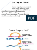 Dogma Sentral