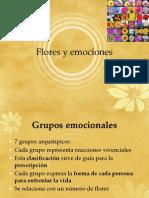 Flores y Emociones