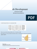 Tooth Development(Dr Hasan)