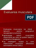 Evaluarea musculara