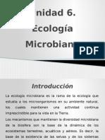 UNIDAD 6. ECOLOGIA MICROBIANA.pptx