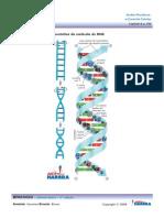 Ácidos Nucleico e Respiração