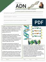 B-22 ADN.pdf