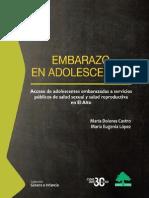 Embarazo en Adolescentes. Acceso de adolescentes embarazadas a servicios públicos de salud sexual y salud reproductiva en El Alto.