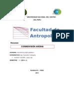 COSMOVISIÓN-ANDINA.docx