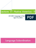 17. Native American - IIk