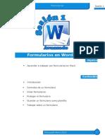 man1_WordAv2010.pdf