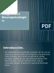 Neuropsicologia Del Envejecimiento