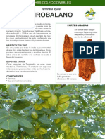 81 - Mirobalano.pdf