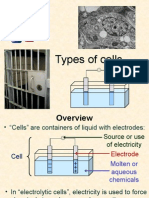 Cell Types