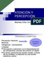 Atención y Percepción