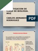 CONJUGACION Y TRANSDUCCION.pptx