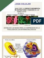 01 Introducción y Origen de La Vida 2013 Biologia Celular