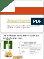 5 Las enzimas en la fabricación de productos.pptx