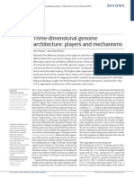 Three Dimensional Genome Architecture Players and Mechanisms