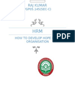 FINAL HRM How to Develop Hope in an Organization.docx FINAL