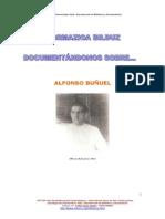 Bunuel Alfonso
