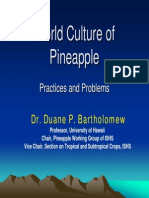 Pineapple Seminar Taiwan