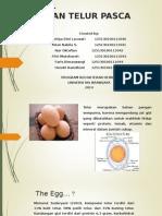 Kelompok 1 - Penanganan Telur Pasca Panen