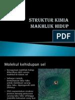 Kg Kulia-2 Struktur Kimia Makhluk Hidup A