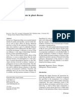 The Role Magnesium of Plant Disease