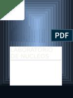 LABORATORIO_NUCLEOS N1