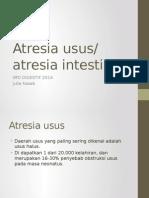 2 Atresia Intestinal (Gastrointestinal)