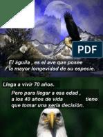 El_guila