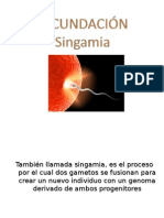 FECUNDACIÃN-1.ppt