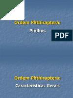 Estudantes - Ordem Phthiraptera
