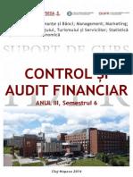 Control Si Audit Financiar