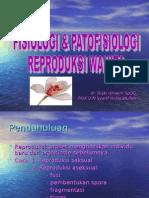 patofisiologi reproduksi