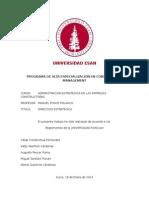 1 Trabajo Prãctico de Direccion Estrategica (1)