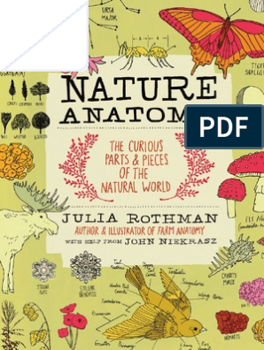 Nature Anatomy - The Curious Parts and Pieces of the Natural World