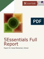 Report 5essentials JNS