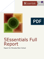 Report 5essentials MES