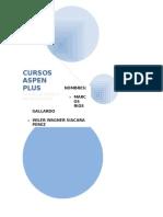 Aspen Plus trabajo realizado