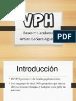 Virus de Papiloma Humano BM