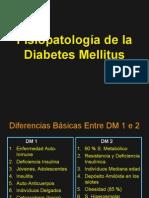 Diabetes Fisiopatología