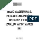 Potencial de La Bioenergã_a Loreto, Ucayali, San Martin y Madre de Dios (1)
