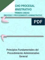 2 Principios Procedimiento Administrativo