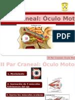 III Par Craneal 1