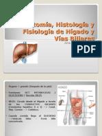 20110413 Anatom a Histolog a y Fisiolog a de h Gado y