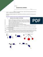 Guia de Dinamica II° Medio.doc